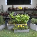 Huerta Orgánica