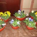 Curso 1 de Las Escuelas de Exposiciones Florales del National Garden Clubs Inc