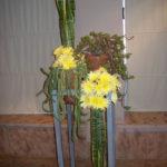 Pot et fleur. Primer premio de Liliana Noviski