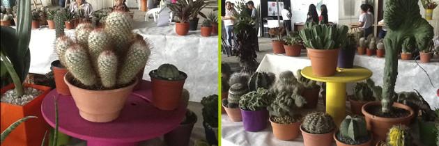 4ª Exposición Provincial de Floricultura y Plantas Ornamentales de la Provincia de Jujuy