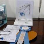 Tema Frozen 1er premio Y Cucarda Petite Mejor Sección pequeños Sra Diana MacGibbon