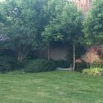 Vistas del Jardín y entrega de premios