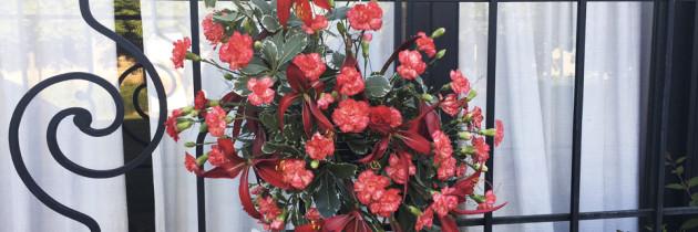 """Exposición """"Jardinería y Arte Floral"""""""