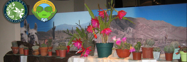 National Garden Clubs | Fotos Expo 90 años GCA en Flickr