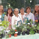 Exposición Madre Tierra en Córdoba