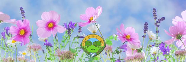 Manual de Exposiciones Florales * Nueva versión
